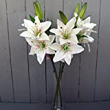 6 x Artificial Ivory Tiger Lily Flower Sprays by Permabloom