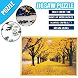 Puzzles for Adults 1000 Piece Large