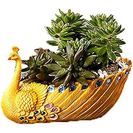 Yellow Peacock Plant Pot