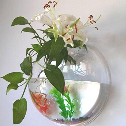 Yooyoo Creative Acrylic Hanging Wall Mount Fish Tank Bowl Vase Aquarium Plant Pot Bowl Bubble Aquarium Decor (11.6 inches)