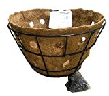 20'' Double Row Side Planting Hanging Basket with Coco Liner