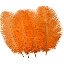Sowder 20pcs Natural 10-12inch(25-30cm) Ostrich Feathers Plume Wedding Centerpieces Home Decoration(Orange)