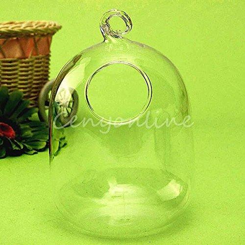New hanging mount bubble aquarium fish glass vase tank for Aquarium vase decoration