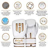 Hawk Boxing Gloves for Men & Women Training