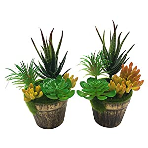 PietyDeko Mixed Artificial Succulent Flowers Plants with Pot Decor Stems Fake Succulents Plants Bulk Assorted Picks for Home Decor Indoor Wall Garden DIY 2set 44