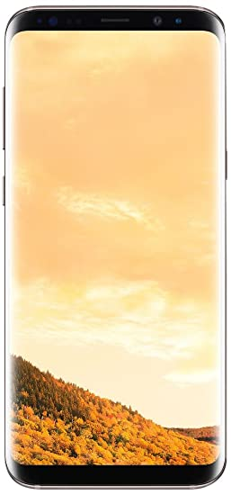 d1d5e7e5182bb Image Unavailable. Image not available for. Color  Samsung Galaxy S8 G950FD  64GB Maple Gold ...
