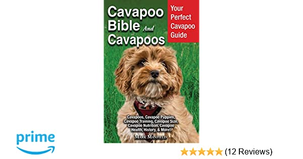 Cavapoo Bible and Cavapoos: Your Perfect Cavapoo Guide