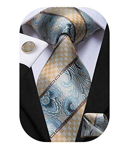 Dubulle Paisely Mens Tie and Pocket Square Necktie with Handkerchief for Business (Best Way To Store Neckties)