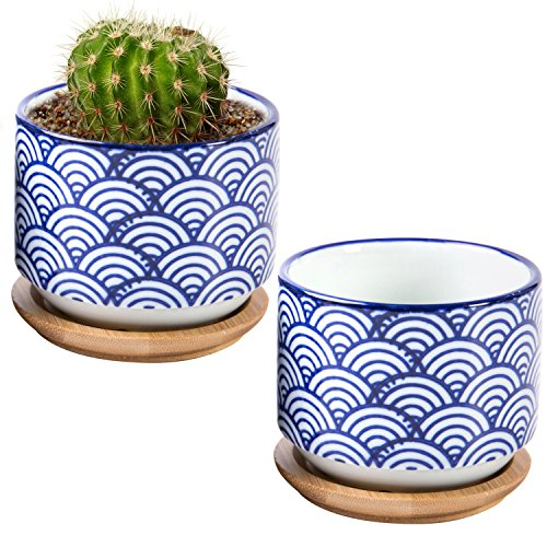3 inch Japanese Style Wave Ceramic Succulent Planter Pots with Bamboo Drip Tray, Set of 2, White & Blue (Round Vases Bamboo)