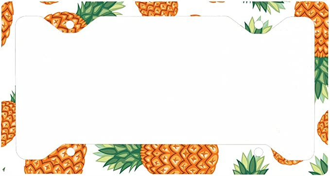 Decorative License Plate Frame Pineapple Customized Personalized Stainless Steel License Plate Frame Holder