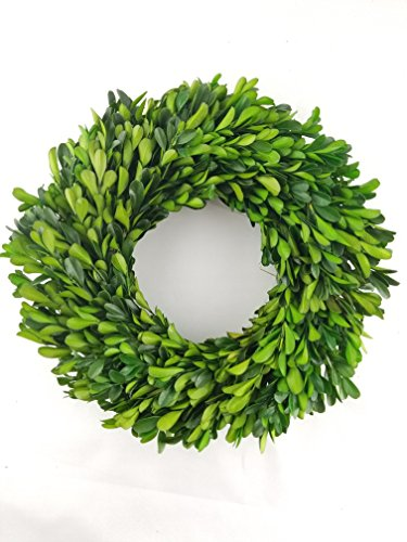 Tradingsmith Preserved Boxwood Wreath - 10'' by Tradingsmith