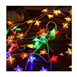 padom 6.0m Multicolor 40 LED Star String Lights LED Fairy Lights Christmas Wedding Home Decoration Lights with AAA Battery Operate Twinkle Lights (Without Batteries)