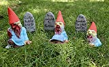 Zombie Gnomes: Graves of the Garden Gnomes