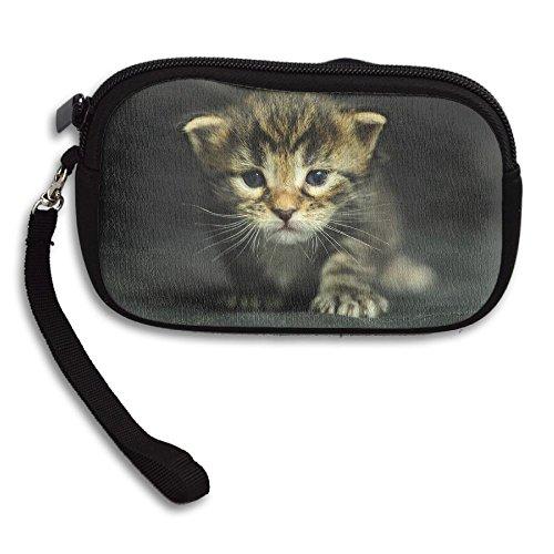 kitten dressed up - 4