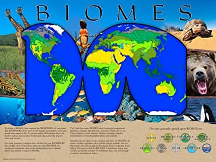 Amazon Com Biomes Poster Series Laminated Set Of 10 Posters