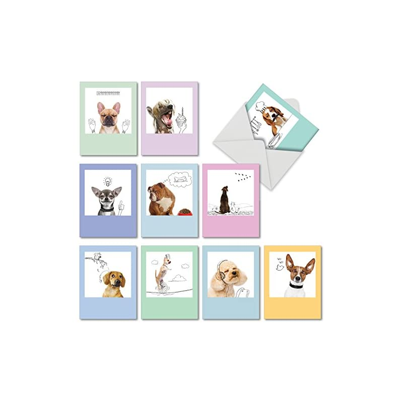 dogs-doodles-all-occasion-note-cards
