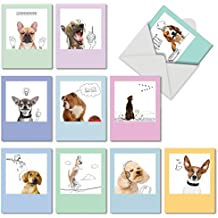M6582OCB Dogs & Doodles: 10 Assorted Blank All-Occasion Note Cards Featuring Adorable Doggie Images Combined with Line Drawings to Create Fun and Funky Portraits, w/White Envelopes.