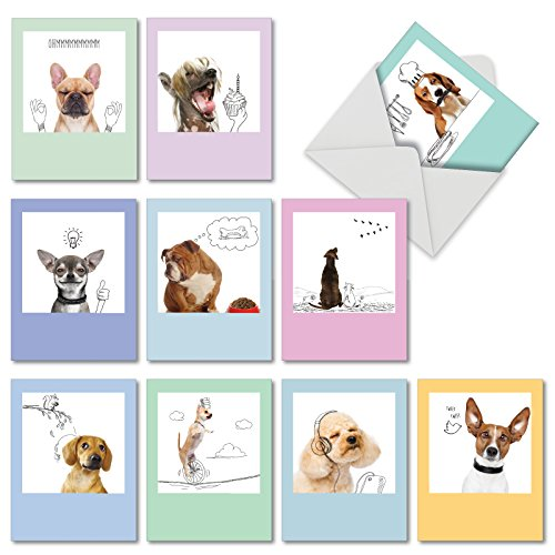 Dogs and Doodles - 10 Boxed All Occasion Dog Note Cards with Envelopes (4 x 5.12 Inch) - Funny Blank Greeting Card Set for Kids, Pet Owners - Assorted Dog and Cute Puppy Photos M6582OCBsl ()