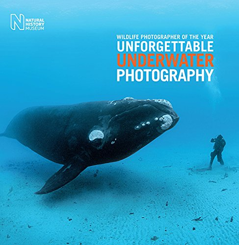 Wildlife Art Museum - Wildlife Photographer of the Year: Unforgettable Underwater Photography