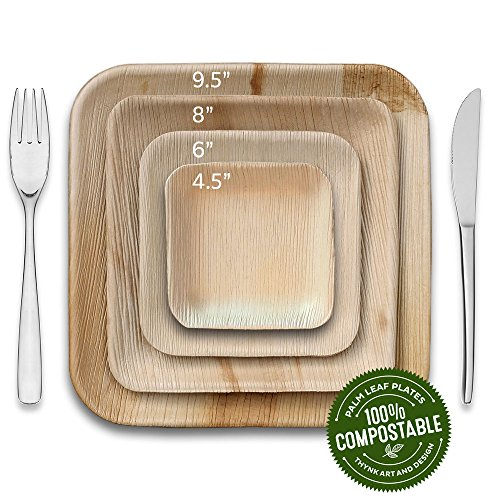 Thynk Leafplates - Premium Palm Leaf Plates - 9.5 Inch Square - All Natural 100% Compostable - Disposable - Perfect Party Plates - 20 Count - Better than bamboo