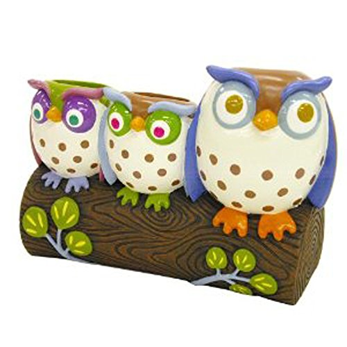 - Allure Home Creations Awesome Owls Resin Toothbrush Holder
