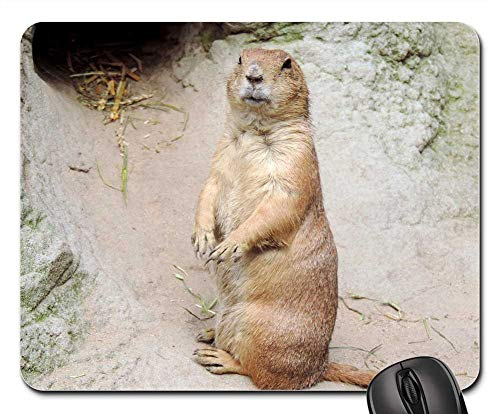 Mouse Pad - Marmot Rodent Croissant Mankei Gophers ()