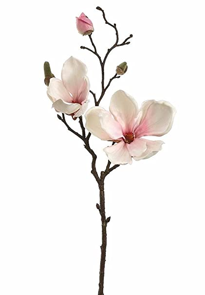 Amazoncom Afloral Silk Magnolia Branch In Blush Pink 19 Tall