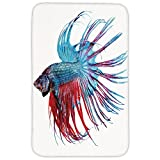 Rectangular Area Rug Mat Rug,Aquarium,Fantastic Betta Fish Close Up Dragon Fish with Fringy Tail Tropic Aquatic Life Decorative,Light Blue Red,Home Decor Mat with Non Slip Backing
