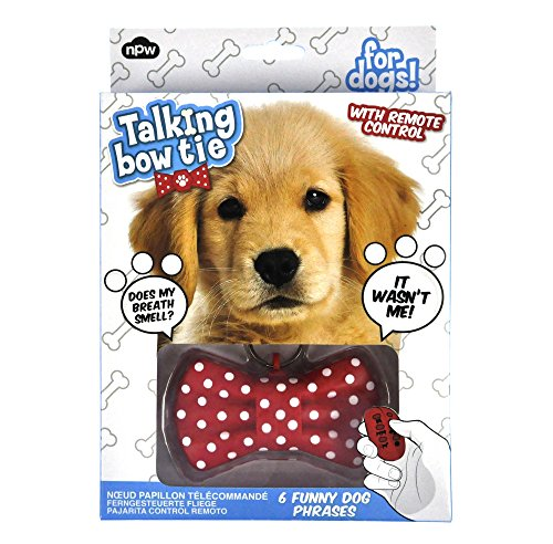 Talking Bow Tie for Dogs