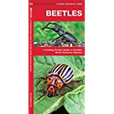 Beetles: A Folding Pocket Guide to Familiar North American Species (A Pocket Naturalist Guide)