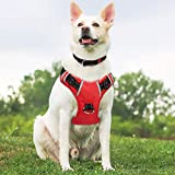 Babyltrl Dog Harness No Pull & No-Choke Adjustable Pet Harness with Dog Collar