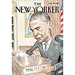 The New Yorker, November 28th 2016 (David Remnick, Nicola Twilley, Jelani Cobb)
