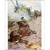 Media Storehouse 10x8 Print of Goodbye Old Man - Soldier and dying horse during WWI (594559)