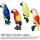 Laideyilan Outdoor Solar Garden Lights Parrot Lamp with 4 Different Colors,360°Flexible Clamp Base for Lawn Pathway Walkway Patio Backyard Outdoor Decoration Solar Parrot Lights