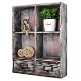 Rustic Torched Wood Wall Mounted Shadow Box w/Cubby Shelving, 2 Drawers and Label Holders, Dark Brown Review