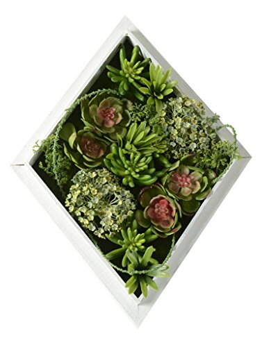 11.81 in11.81 in, 3D House Adornment Metope Artificial Wall Decoration Artificial Flowers, Succulent plants Green Grass Leaves wedding Decorations living Room Stairs, Wood Photo Frame Shape Vase
