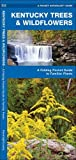 Kentucky Trees & Wildflowers: A Folding Pocket Guide to Familiar Species (A Pocket Naturalist Guide)
