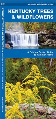 Kentucky Trees & Wildflowers: A Folding Pocket Guide to Familiar Species (A Pocket Naturalist (Kentucky State Tree)