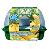 DuneCraft SG-0759 Sprout 'N Grow Greenhouses Banana