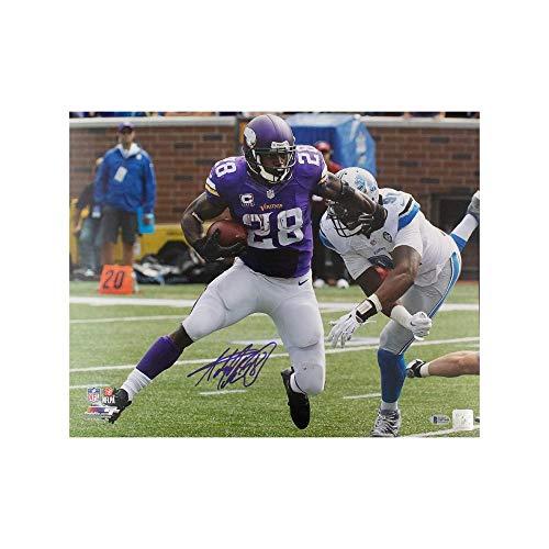(Adrian Peterson Autographed Minnesota Vikings 16x20 Photo - BAS COA Purple Jersey)