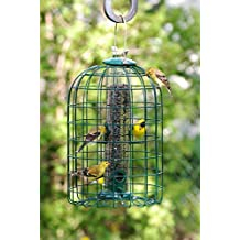 Audubon Squirrel Proof Bird Feeder