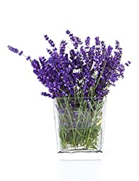 Organic Dried Lavender Flowers Perfect for Homemade Tea, Popurri, Bath Salts, Gifts, Crafts, Wild Flower #3 (4 ounce)