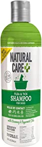 Natural Care Flea and Tick Dog Shampoo | Flea Treatment for Dogs | Flea Killer with Certified Natural Oils | 12 Ounces