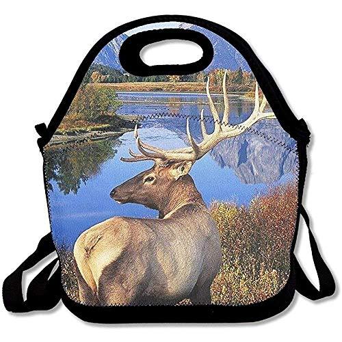 Deeoor Maozond8 Lunch Tote Wild Elk Lunch Boxes Lunch Bags Handbag Food Storage Fits for School Travel Work Outdoor Handbag for School Office