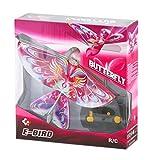 eBird Pink Butterfly - 2016 Creative Child