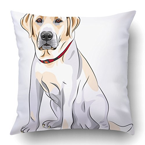 Emvency Throw Pillow Covers Black Lab Portrait Close Up Serious Yellow Dog Breed Labrador Retriever Sits White Sketch Big Polyester 18 X 18 Inch Square Hidden Zipper Decorative Pillowcase (Breed Portrait Throw)