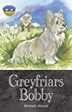 Storyworlds Bridges Stage 12 Greyfriars Bobby (single)
