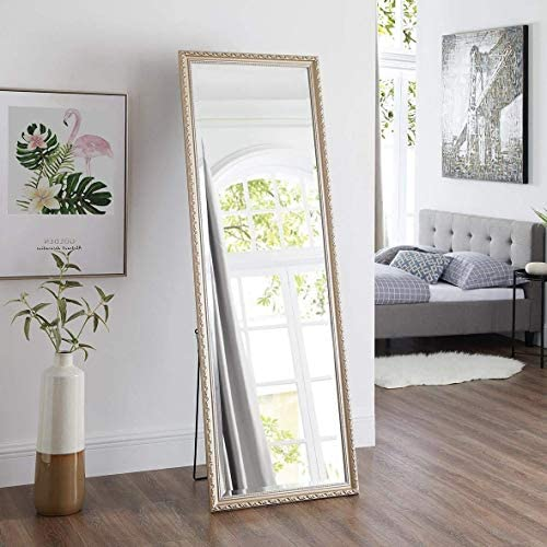 Naomi Home Diana Ornamental Full Length Floor Mirror Champagne/65 x 22