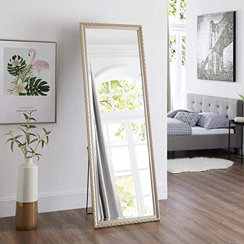 Naomi Home Diana Ornamental Mirror Champagne/65 x 22 (Mirrors Ornamental)