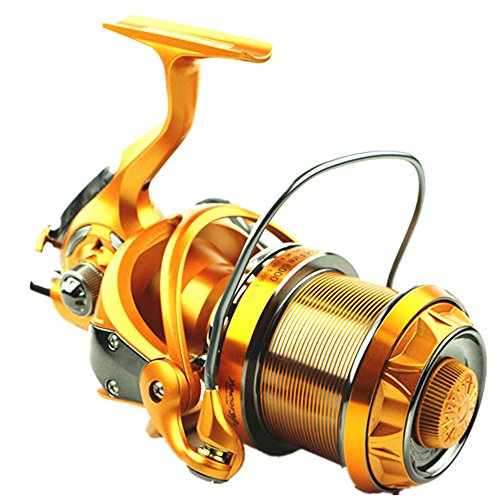 Lanlanmaoyimg Spinning Fishing Reel with Double Drag Brake System Baitrunner Reel 10+1 Stainless Steel Left Right Interchangeable Handle for Fishing Gear Ratio 5.1:1 (Size : 4000)